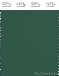 PANTONE SMART 19-5511X Color Swatch Card, Hunter Green
