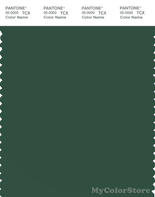 PANTONE SMART 19-5513X Color Swatch Card, Dark Green
