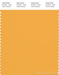 PANTONE SMART 15-1049X Color Swatch Card, Artisan's Gold