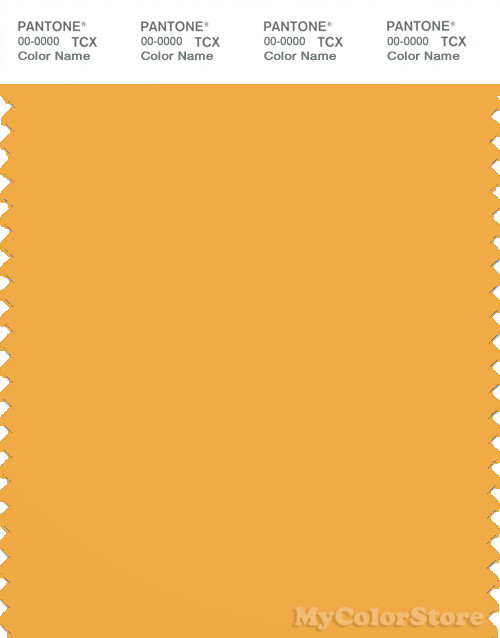 PANTONE SMART 15-1049X Color Swatch Card, Artisan's Gold
