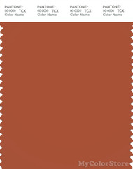 PANTONE SMART 18-1340X Color Swatch Card, Potter's Clay