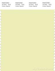 PANTONE SMART 11-0710X Color Swatch Card, Tender Yellow