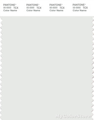 PANTONE SMART 11-4800X Color Swatch Card, Blanc De Blanc