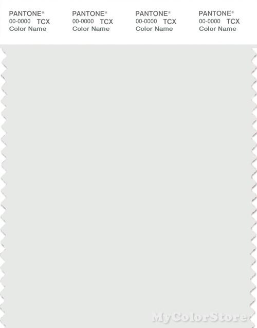PANTONE SMART 11-4800X Color Swatch Card, Blanc De Blanc