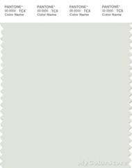 PANTONE SMART 11-4803X Color Swatch Card, Ice
