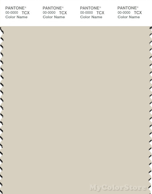 PANTONE SMART 12-0105X Color Swatch Card, Bone White