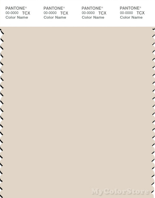 PANTONE SMART 12-0304X Color Swatch Card, Whitecap Gray