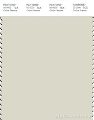 PANTONE SMART 12-0404X Color Swatch Card, Light Gray