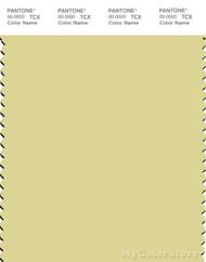 PANTONE SMART 12-0626X Color Swatch Card, Pale Star