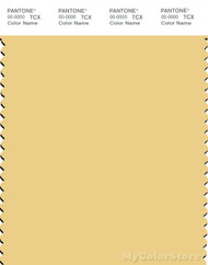 PANTONE SMART 12-0729X Color Swatch Card, Sundress