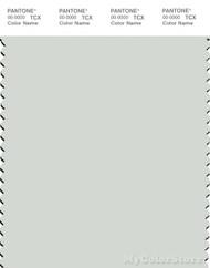 PANTONE SMART 12-5203X Color Swatch Card, Murmur