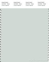PANTONE SMART 12-5403X Color Swatch Card, Blue Flower