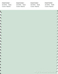 PANTONE SMART 12-5504X Color Swatch Card, Light Blue Green