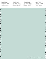 PANTONE SMART 12-5505X Color Swatch Card, Glacier