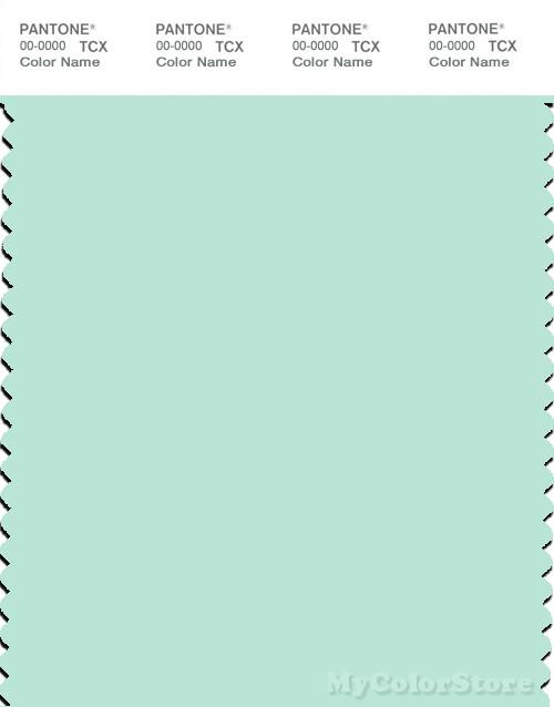 PANTONE SMART 12-5507X Color Swatch Card, Bay
