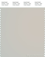 PANTONE SMART 13-0000X Color Swatch Card, Moonbeam
