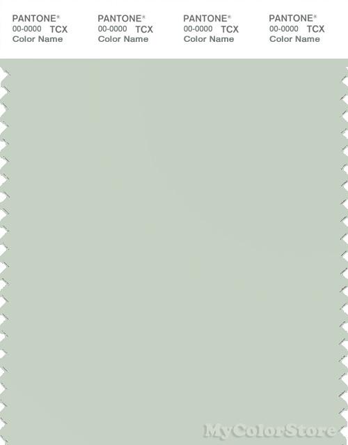 PANTONE SMART 13-0107X Color Swatch Card, Dewkist