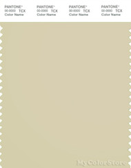 PANTONE SMART 13-0513X Color Swatch Card, Frozen Dew