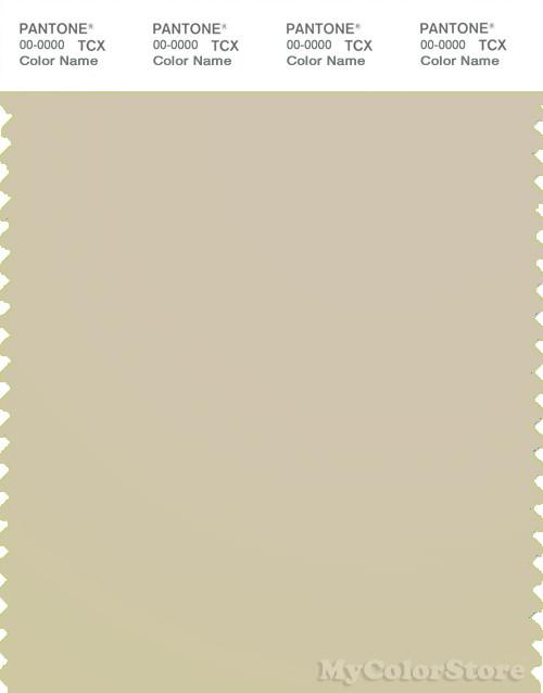PANTONE SMART 13-0607X Color Swatch Card, Fog