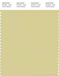 PANTONE SMART 13-0624X Color Swatch Card, Golden Mist