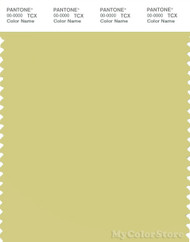 PANTONE SMART 13-0632X Color Swatch Card, Endive