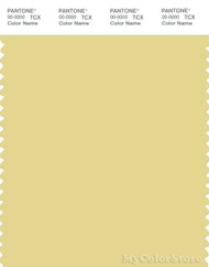 PANTONE SMART 13-0720X Color Swatch Card, Custard