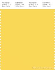 PANTONE SMART 13-0756X Color Swatch Card, Lemon Zest