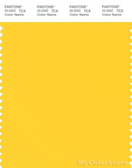 PANTONE SMART 13-0758X Color Swatch Card, Dandelion