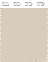 PANTONE SMART 13-0907X Color Swatch Card, Sandshell
