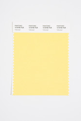 Pantone Smart 12-0735 TCX Color Swatch Card, Yellowtail