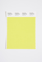 Pantone Smart 13-0643 TCX Color Swatch Card, Yellow Plum
