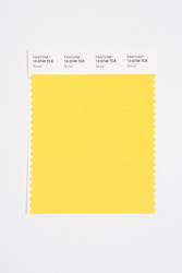 Pantone Smart 13-0749 TCX Color Swatch Card, Slicker