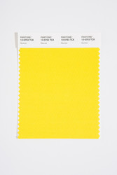 Pantone Smart 13-0753 TCX Color Swatch Card, Quince