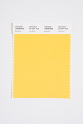 Pantone Smart 13-0754 TCX Color Swatch Card, Sunstruck