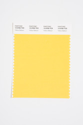 Pantone Smart 13-0760 TCX Color Swatch Card, Yellow Balloon