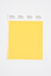 Pantone Smart 13-0760 TCX Color Swatch Card, Yellow Balloon