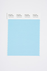 Pantone Smart 13-4307 TCX Color Swatch Card, Tropical Breeze
