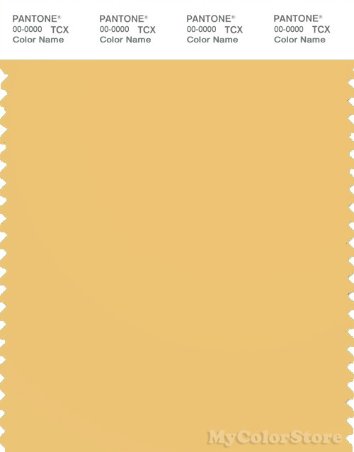 PANTONE SMART 13-0932X Color Swatch Card, Cornsilk