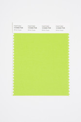 Pantone Smart 14-0442 TCX Color Swatch Card, White Grape