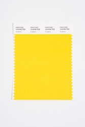 Pantone Smart 14-0745 TCX Color Swatch Card, Incaberry
