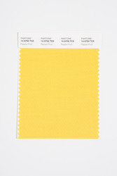 Pantone Smart 14-0750 TCX Color Swatch Card, Passion Fruit