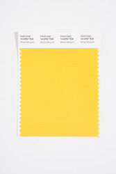 Pantone Smart 14-0757 TCX Color Swatch Card, Misted Marigold