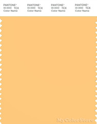 PANTONE SMART 13-0935X Color Swatch Card, Flax
