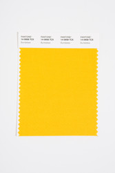 Pantone Smart 14-0958 TCX Color Swatch Card, Bumblebee