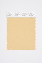 Pantone Smart 14-1026 TCX Color Swatch Card, Moonstone