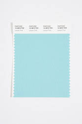 Pantone Smart 14-4815 TCX Color Swatch Card, Leisure Time