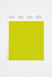 Pantone Smart 15-0544 TCX Color Swatch Card, Grenoble Green