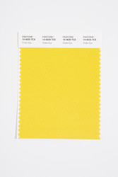 Pantone Smart 15-0635 TCX Color Swatch Card, Snake Eye