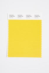 Pantone Smart 15-0635 TCX Color Swatch Card, Snake Eye