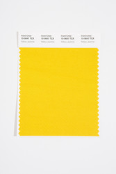 Pantone Smart 15-0647 TCX Color Swatch Card, Yellow Jasmine